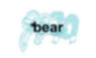 BEAR PROJECT.png