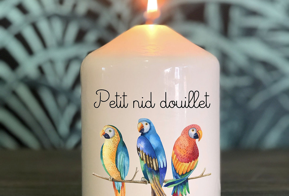 Bougie Perroquet