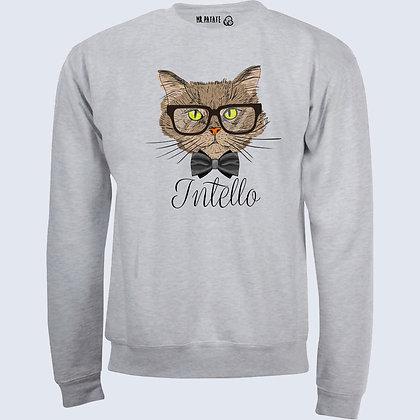 Sweat-Pull Over Intello citation chat mignon