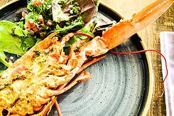 lobster_.jpg