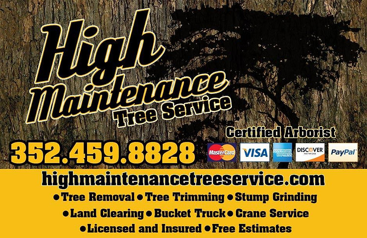 High MaintenanceTree Service Ocala