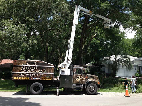 Tree Trimming Ocala