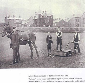 Horse-drawn grass cutter, 1908.jpg