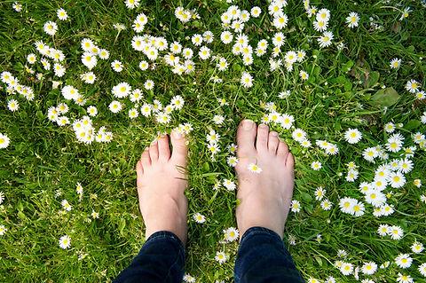 Bare feet on grass.jpg