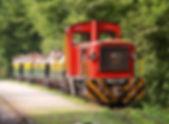 forest-train-szilvasvarad.jpg