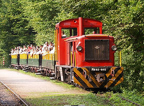forest-train-szilvasvarad.jpg