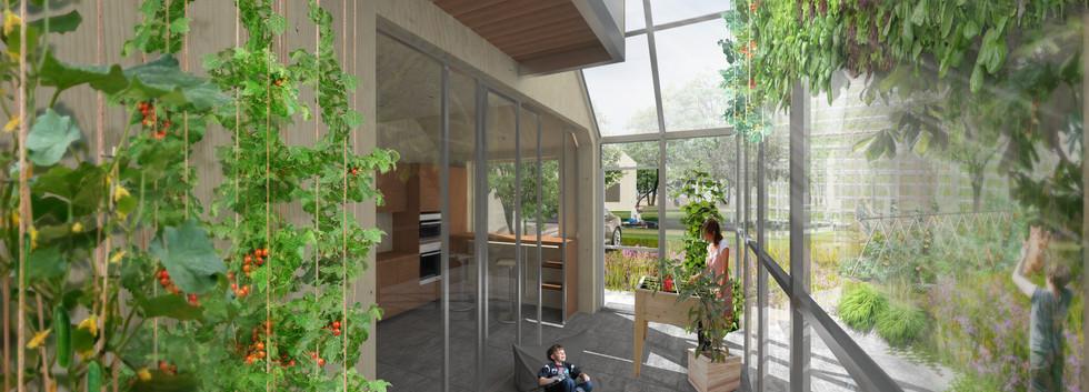 NAT020 groen huis.jpg