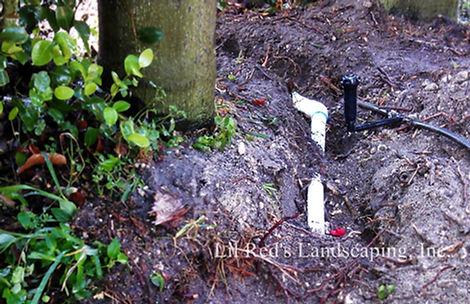 Irrigation 2 LRL.jpg