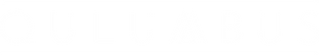 Qulumbus_Logo_Neu_neg.png