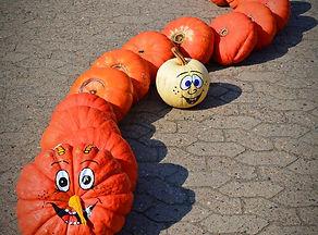 pumpkin_funny_painted_caterpillar.jpg