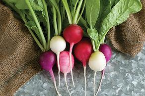 radishes, food, vegetables