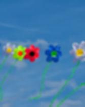 kites, blue sky, flowers