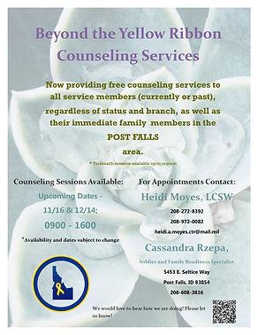 11-16N9v_counseling.jpg