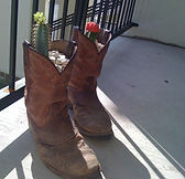 boots, flowers, fence
