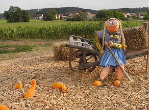 smiling_handmade_scarecrow_standing.jpg