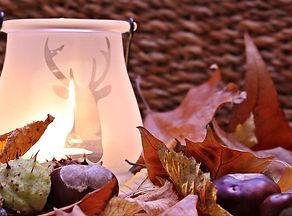 autumn_mood_autumn_fall.jpg