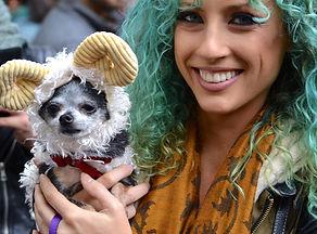 2015_hallowenn_dog_costume_2.jpg