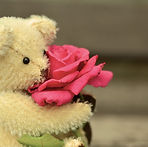 teddy bear, rose