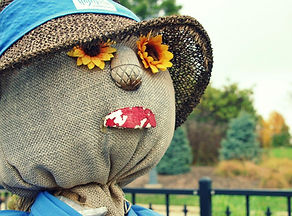 fall_scarecrow_sunflowers_744274.jpg