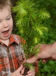 tree seedling, Arbor Day, boy
