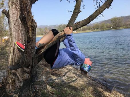 Morgenaktivierung am Pleschingersee