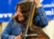 bass fiddle, bluegrass, country music