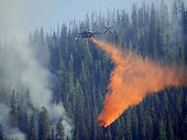 Weather_forest fire2.jpg