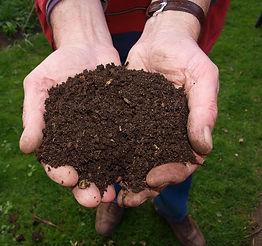 compost, plant, gardening, soil