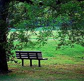 Health_park bench2.jpg