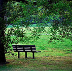 park bench, lawn, peaceful