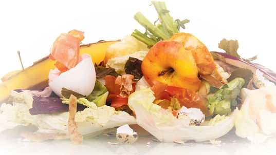 food-waste-from-trash-1_edited.jpg