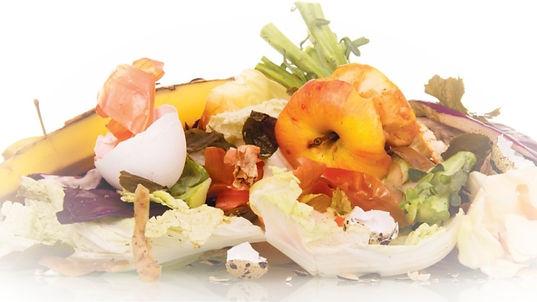 food-waste-from-trash-1_edited.jpg