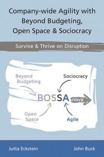Thoughts on Agile BOSSA Nova in the Context of Sociocracy 3.0