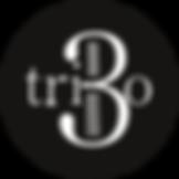 trio 3 logo.png