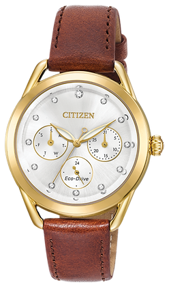 Citizen Watch Strap Brown Leather Part # 59-S53785