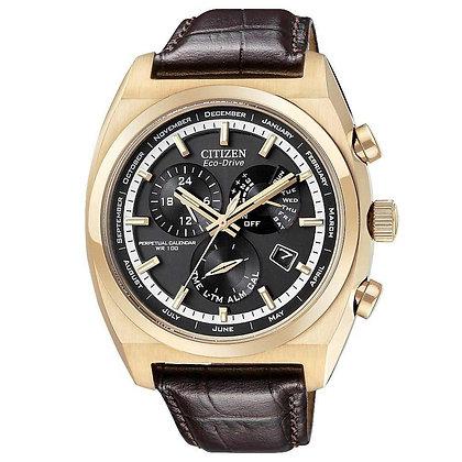 Citizen Watch Strap Dark Brown Leather 22 MM Specialty Part # 59-S52512