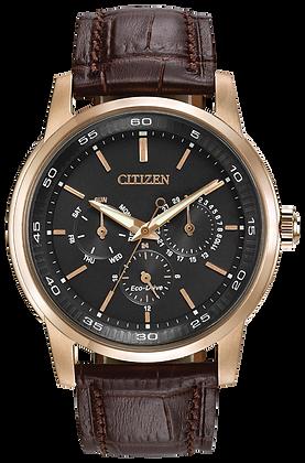 Citizen Watch Strap Brown Leather Part # 59-S53001
