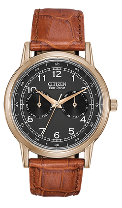 Citizen Watch Band  Light Brown Leather 22MM Part # 59-S52479