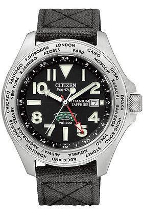 Citizen Watch Band 59-S52560