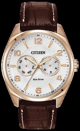 Citizen Watch Strap Brown Leather Part # 59-S52921