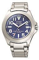 Citizen Watch Bracelet Silver Tone Titanium Part # 59-T00032
