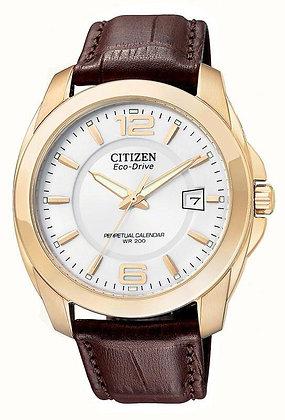 Citizen Watch Strap Dark Brown Leather 21MM Specialty Part # 59-S52041