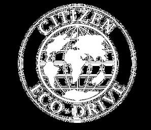 Citizen Eco-Drive Watch Service