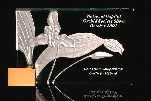 Lycaste Award