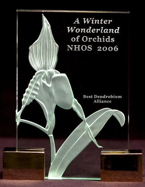 Paphiopedilum praestans Award