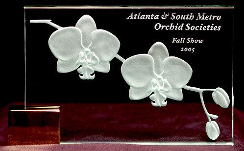 Phalaenopsis Award