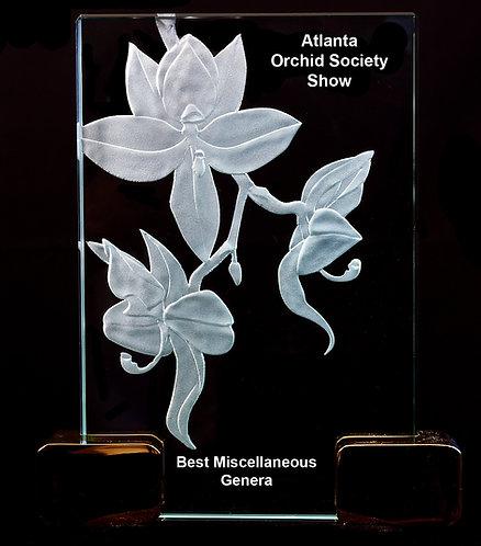 Cycnoches Award