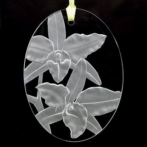 Dendrobium Suncatcher