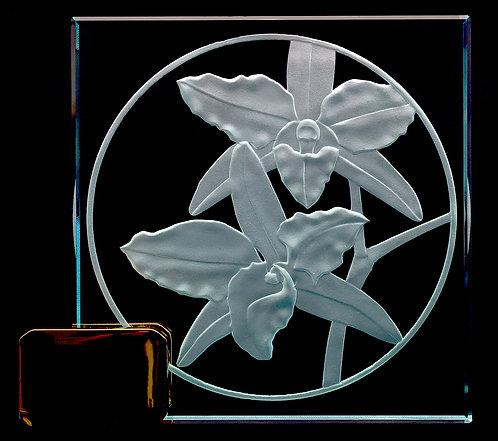 "Dendrobium 4"" x 4"" Award"
