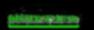 logo couleur vert distinct.png